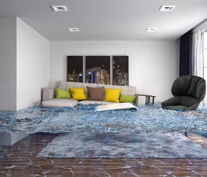 Storm Damage What Goes Into Our Flood Damage Restoration Process That Will Restore Your Boynton Beach Home