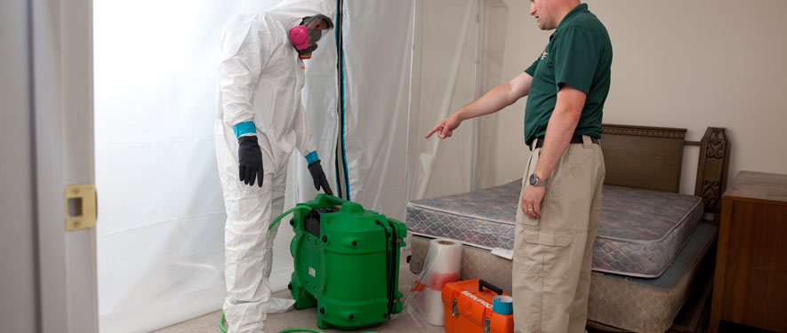 Boynton Beach, FL mold removal process